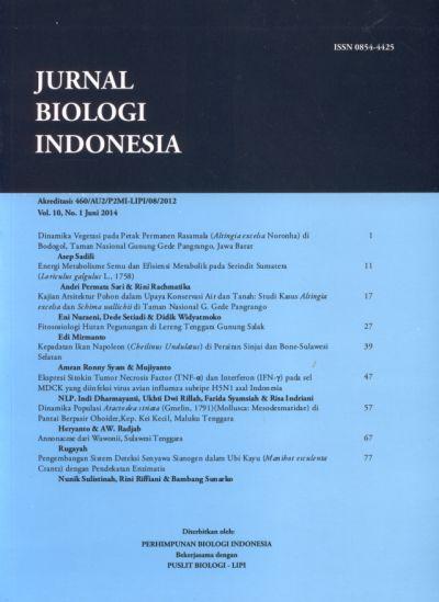 COVER-JBI